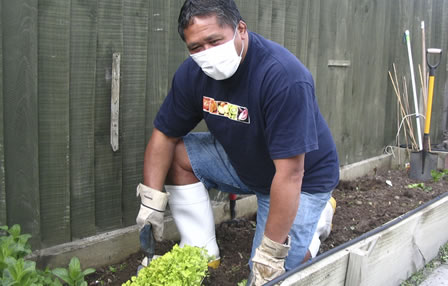 Man with mask potting plants in soil